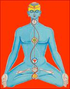 lotus position with chakras