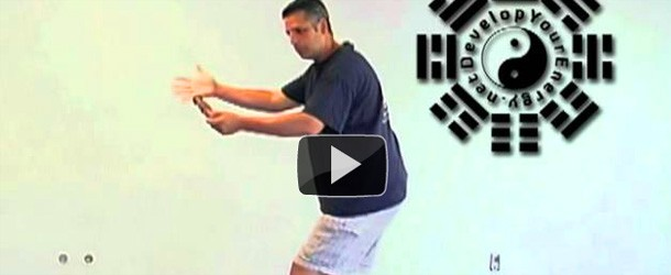 new-tai-chi-ruler-video-posted