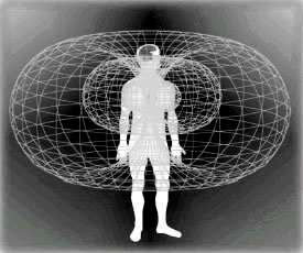 Electromagnetic Field of the Human Heart