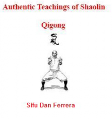 Shaolin Chi